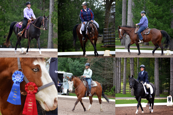 lost creek ranch adult rider dressage western dressage team