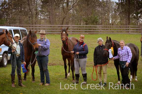 lost creek ranch adult rider dressage team