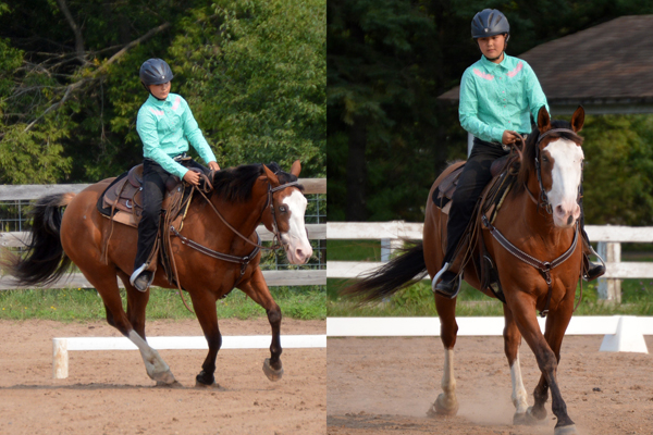 western dressage youth lost creek ranch beldenville wi