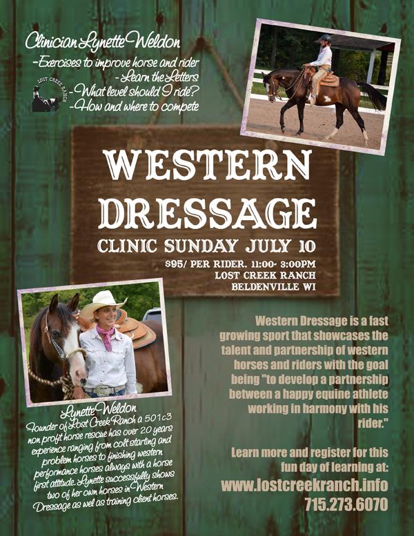 western dressage wisconsin minnesota western dressage trainer lynette weldon