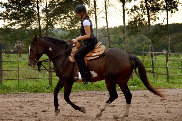 western dressage trainer lynette weldon lost creek ranch beldenville wi