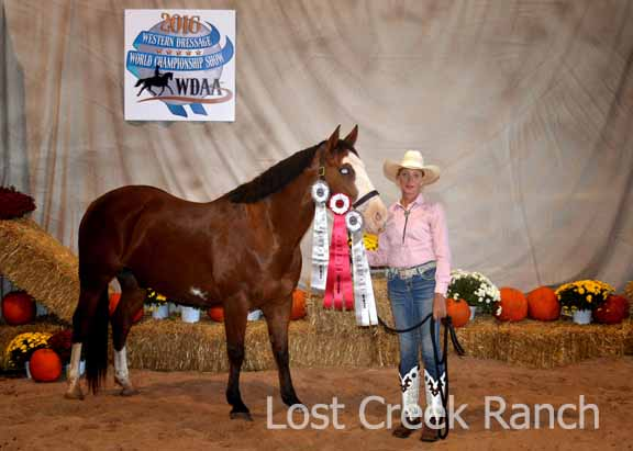 western dressage worlds lynette weldon lost creek ranch wi