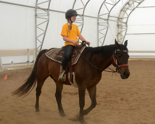 lost creek ranch horseback riding lessons beldenville wi