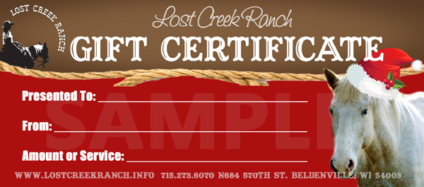 lost creek ranch wi youth horseback riding lessons