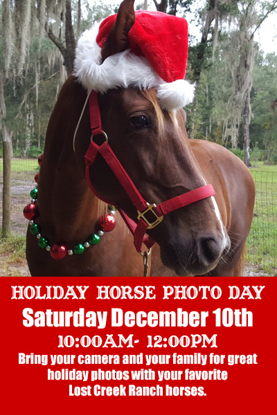 lost creek ranch wi holiday horse photo day